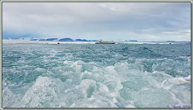 Départ pour une balade en Zodiac à Bethune Inlet - Philpots Island - Nunavut - Canada
