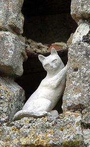 La Romieu : cité des chats et sa légende :