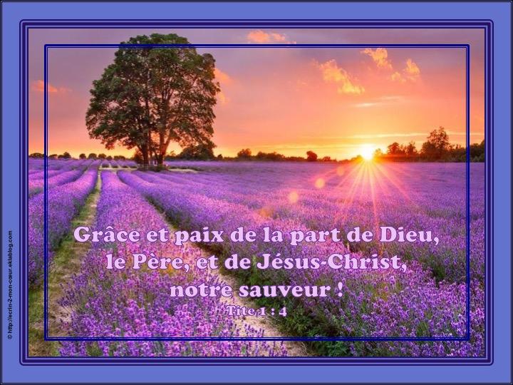 Grâce et paix de la part de Dieu, le Père et de Jésus-Christ, notre Sauveur - Tite 1 : 4