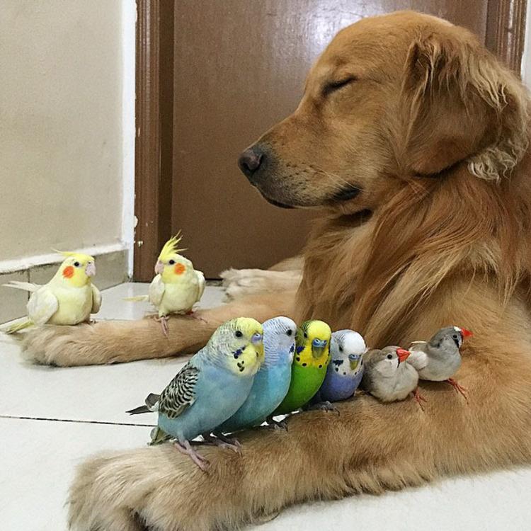 Jolie famille