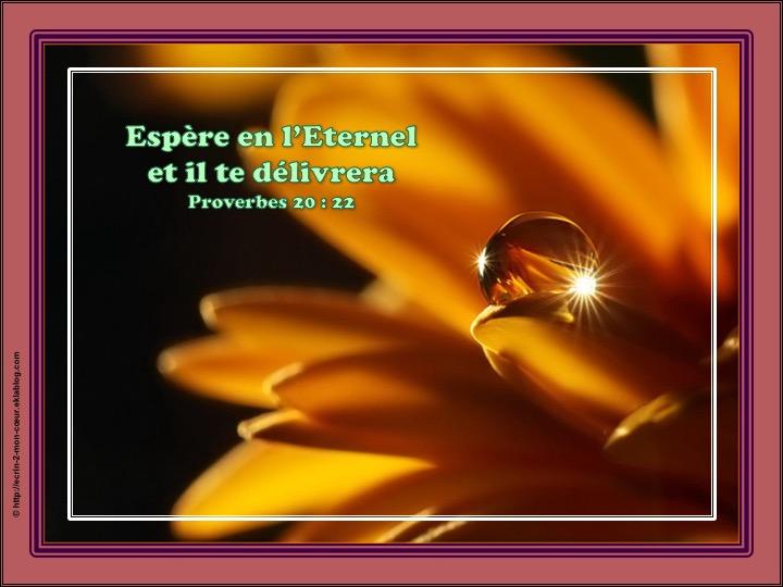 Espère en l'Eternel et il te délivrera - Proverbes 20 : 22