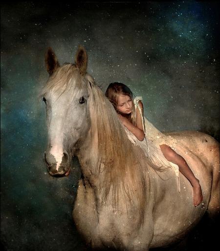 Les chevaux perçoivent les émotions humaines