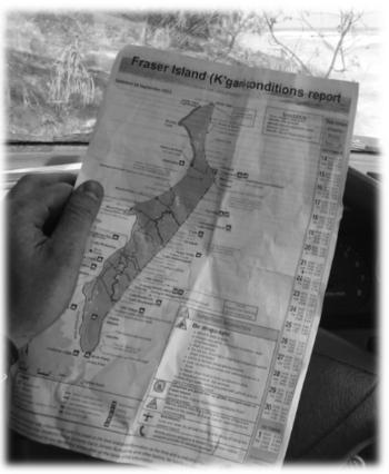 Fraser Island avec Chaaaaalllllyyyyyyyyy!!!!!