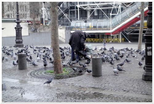 Les Pigeons... A Table.