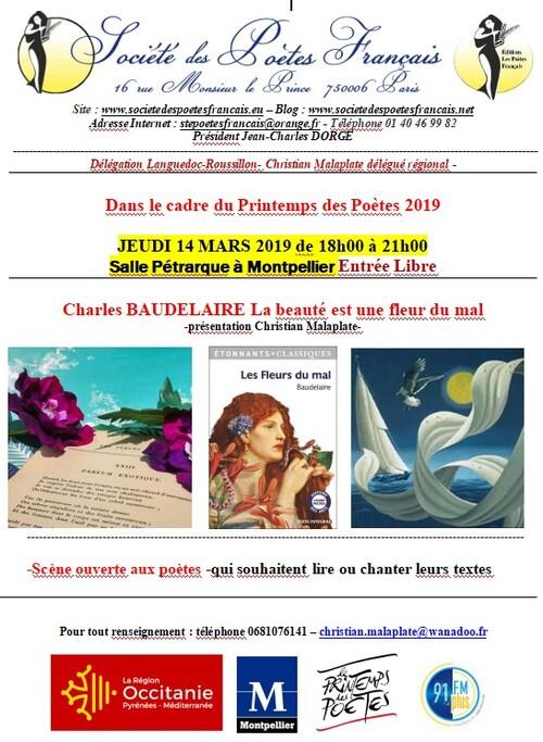 Salle Pétrarque soirées 2019*1*