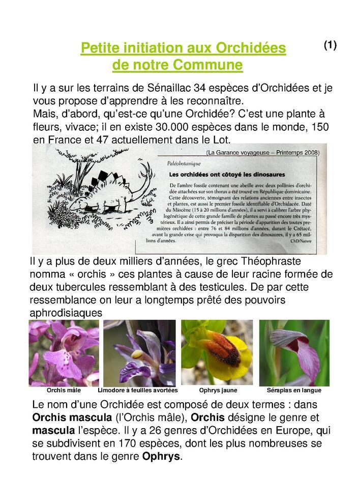 A la découverte des Orchidées de sénaillac-page 1
