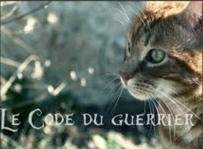 Le Code du Guerrier
