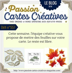 Passion Cartes Créatives#557 !