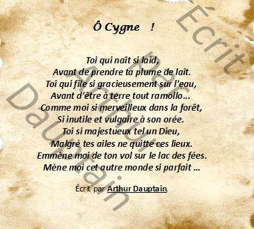 Ô Cygne !