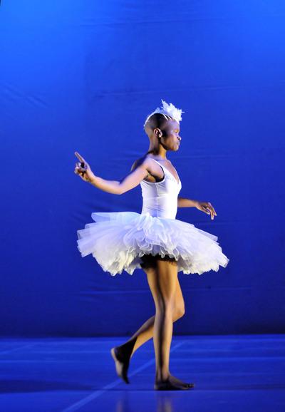 dance ballet swan lake brazilian ballet