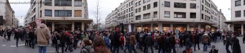 Cortège du 8 décembre, manifestation contre l'aéroport Notre Dame des Landes (2)
