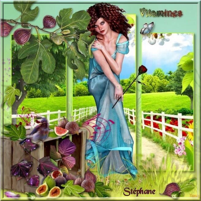 Un défi sur les vitamines , mais fruits et aussi légumes ,
