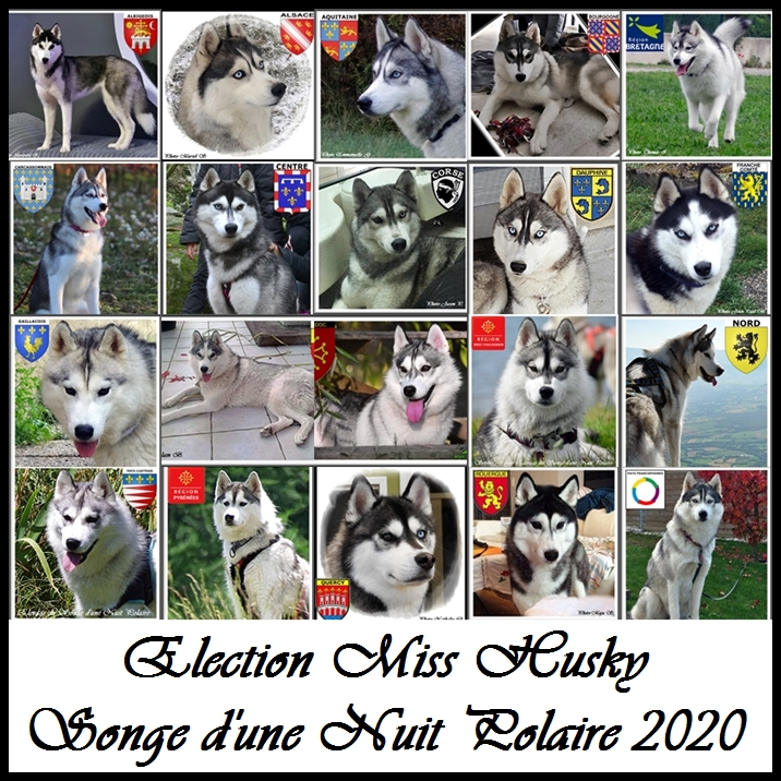 Election Miss Husky Songe 2020