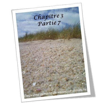 L'été où ma vie a basculée (chapitre 15)