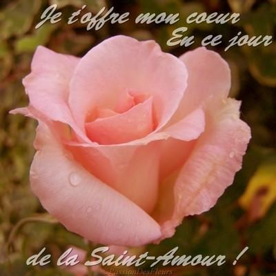 carte amour 100 4884