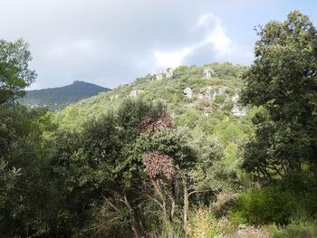 A l'entrée du vallon d'Agnis