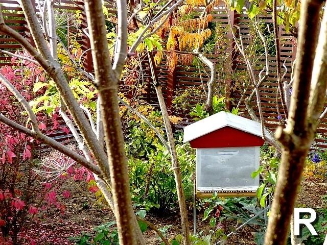 L'abécédaire des jardins R Marc de Metz 31 10 2012