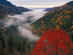 jones-adam-autumn-view-of-fog-from-morton-overlook-great-sm