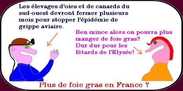 plus de foie gras