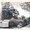 charleville sous bois années 1950