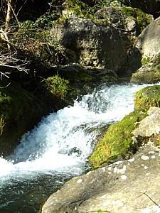 cascade nartuby