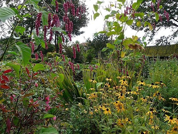 Jardin-de-Briere-22-09-12P1310231.JPG