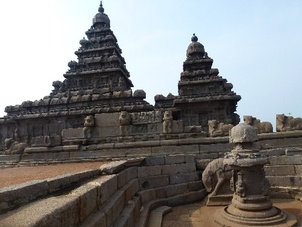 shore temple et le taureau