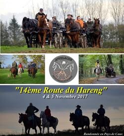 14ème Route du Hareng