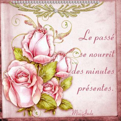 **Pensées de roses 1**