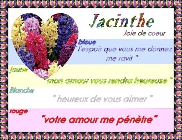 jacinthes.jpg