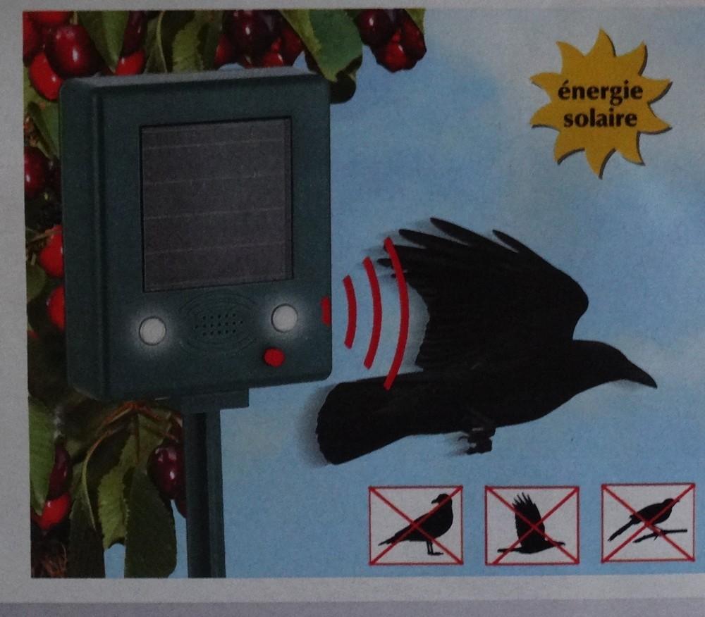 Une solution douce et efficace pour chasser les oiseaux...