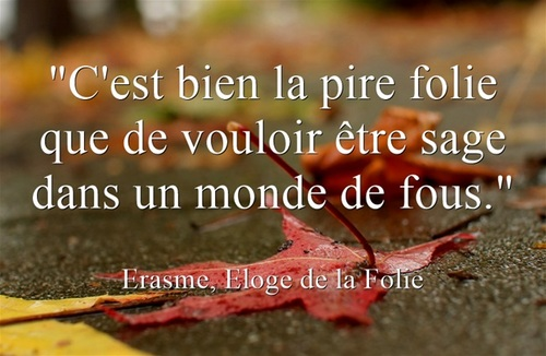 Citation d'Erasme, extraite d'ELOGE DE LA FOLIE
