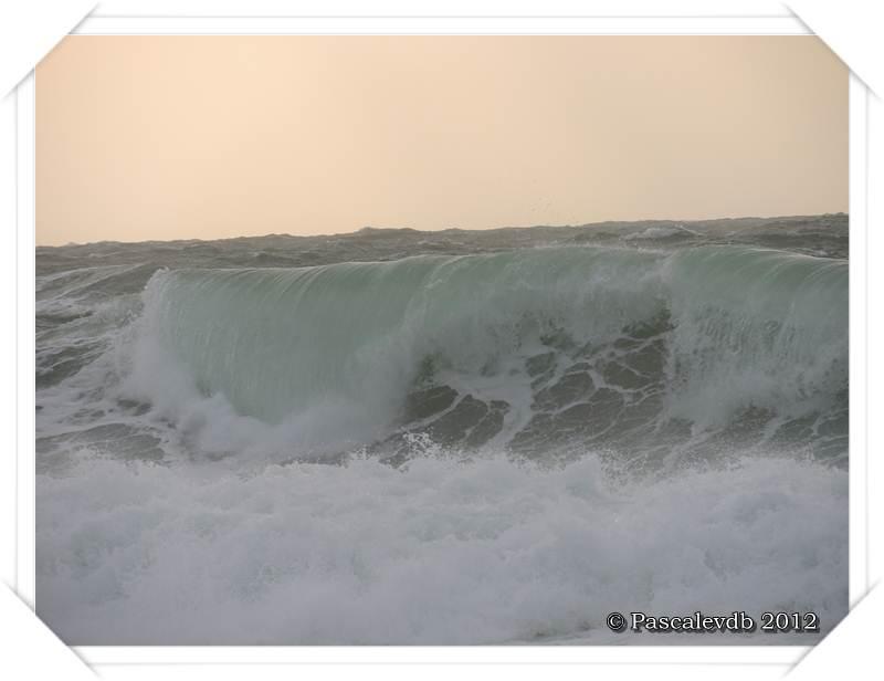 Ambiance de 1er Novembre à Lacanau Océan