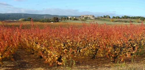 Ardèche - Saint-Marcel-d'Ardèche