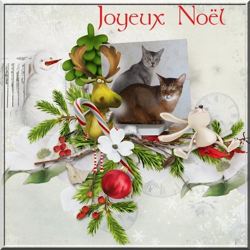 Bon Noël !!!