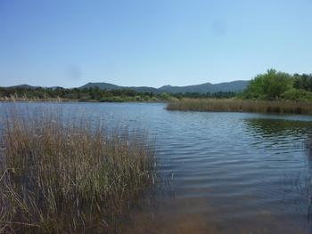 Le lac des Escarcets