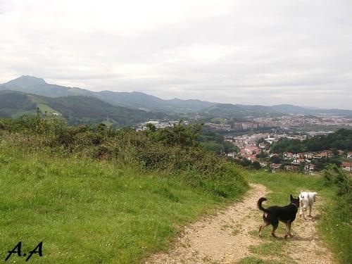 A la montagne