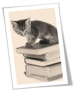 """Emission """"Un jour, un livre"""""""