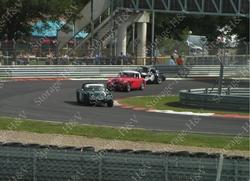 Manifestation de Ferrari