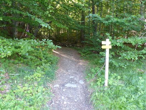Au pied de la Chau (Saint Jean - Montclar)
