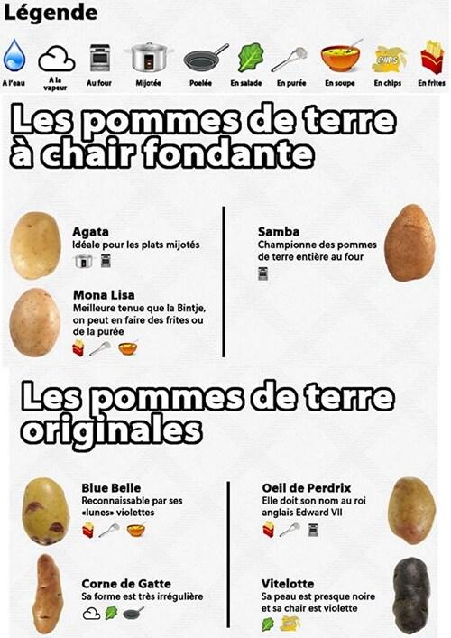 Comment choisir sa variété de pommes de terre