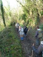 La randonnée du 7 février à Feuguerolles-Bully