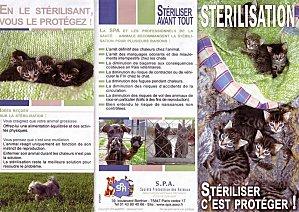 sterilisation-chats-page-1.jpg