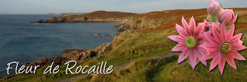 oui la BRETAGNE  est poésie, la mer infiniment belle, Bienvenue en terre celte -fleur de rocaille