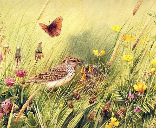 Peinture de : Marjolein Bastin
