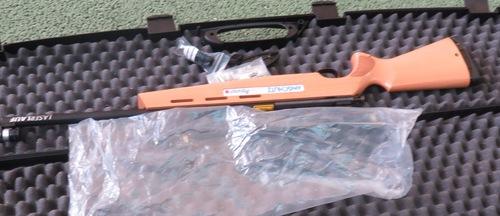 Buggy et carabine laser