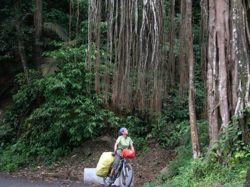 Direction Otti et le parc national de Bandipur et Mudumalai