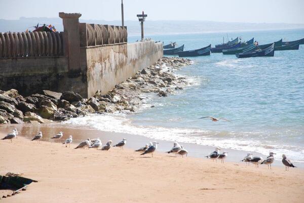 Le petit port de Souira