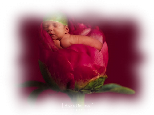 tube femme enceinte