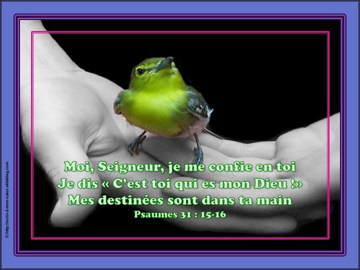 Seigneur, je me confie en toi - Psaumes 31 : 15-16